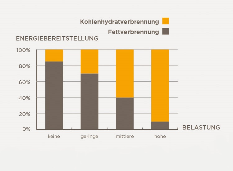 grafische Darstellung relative Fettverbrennung