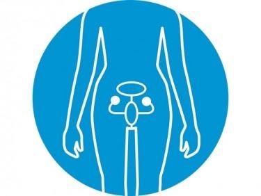 Cancer de l'ovaire – quel traitement pour les patientes?