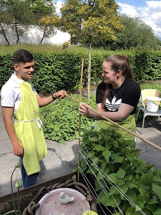 KV-Lernenden bei der Gartenarbeit