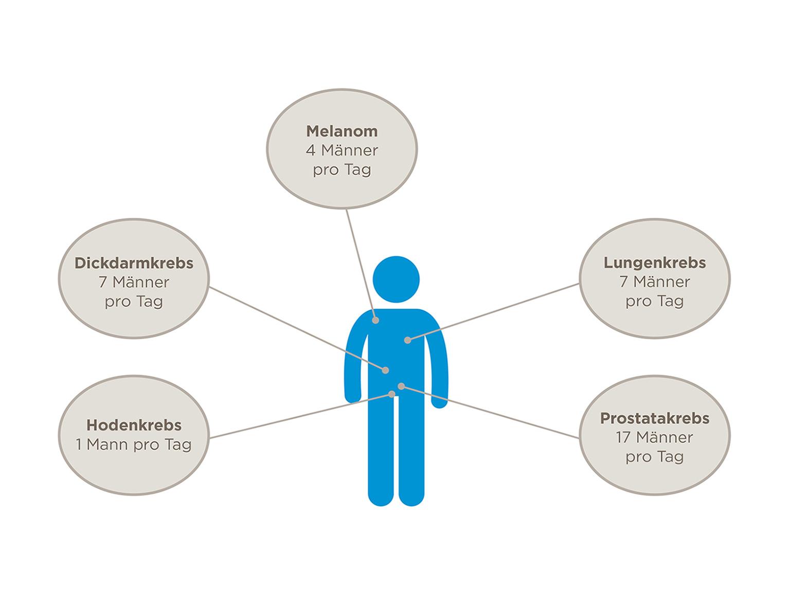 Infografik Krebsarten bei Männern