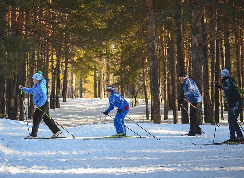 Gruppe beim Wintersport
