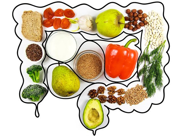 Darm mit gesunden Lebensmitteln