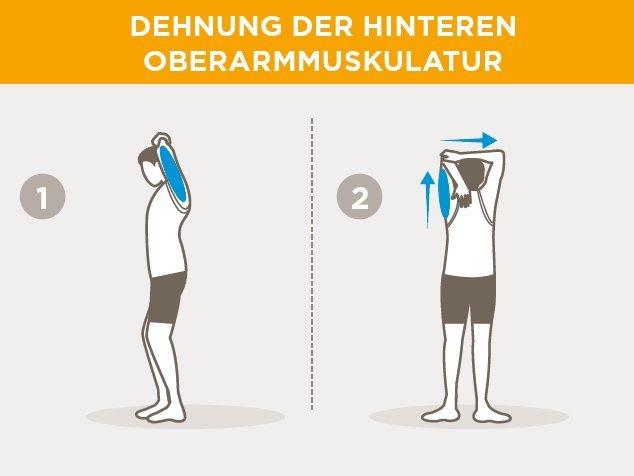 Laufsport-Aufwärmen-Dehnung-hintere-Oberarmmuskulatur
