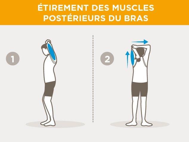 exercices-échauffement-muscles postérieurs du bras